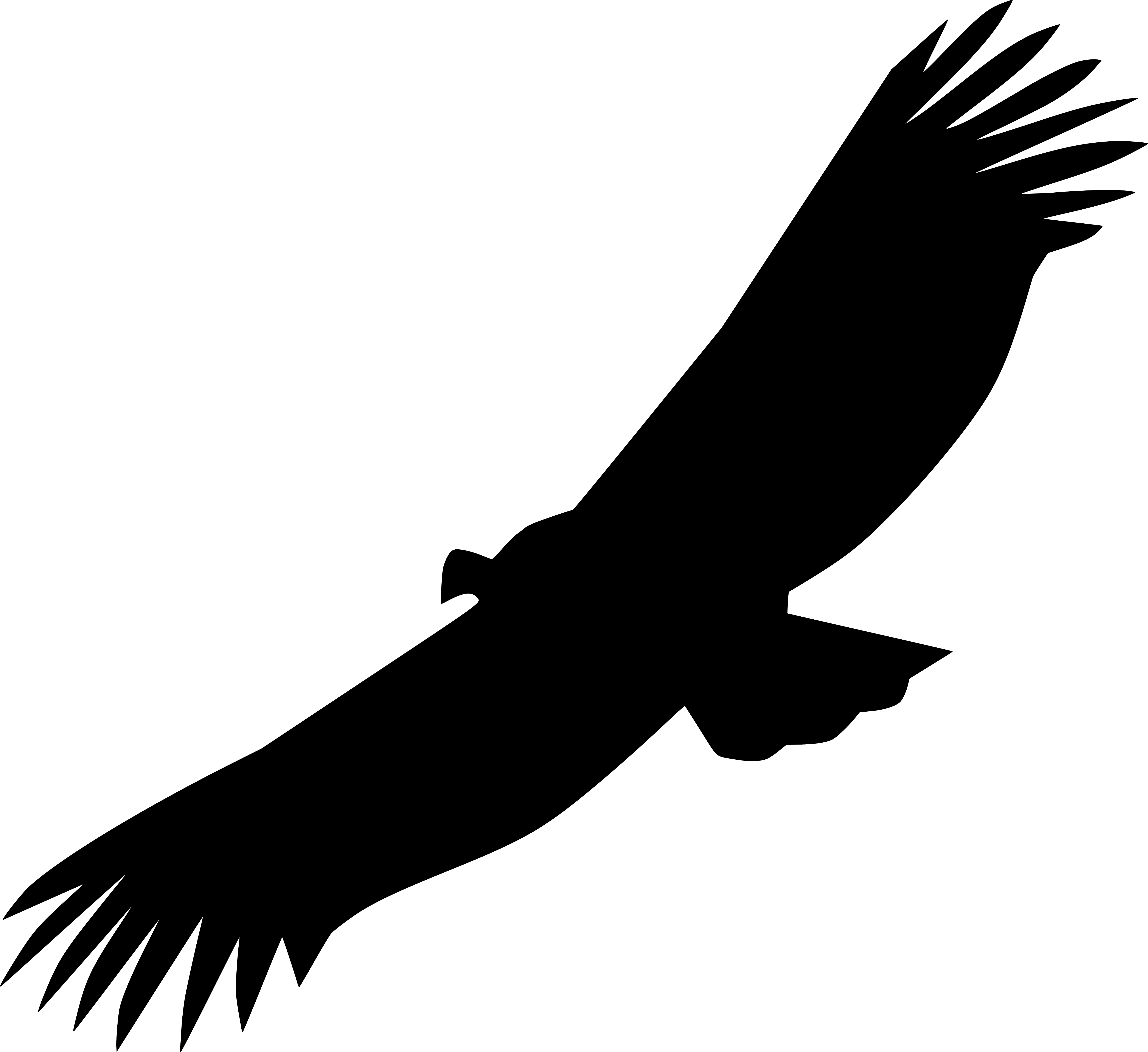 vautour gorges du tarn icone