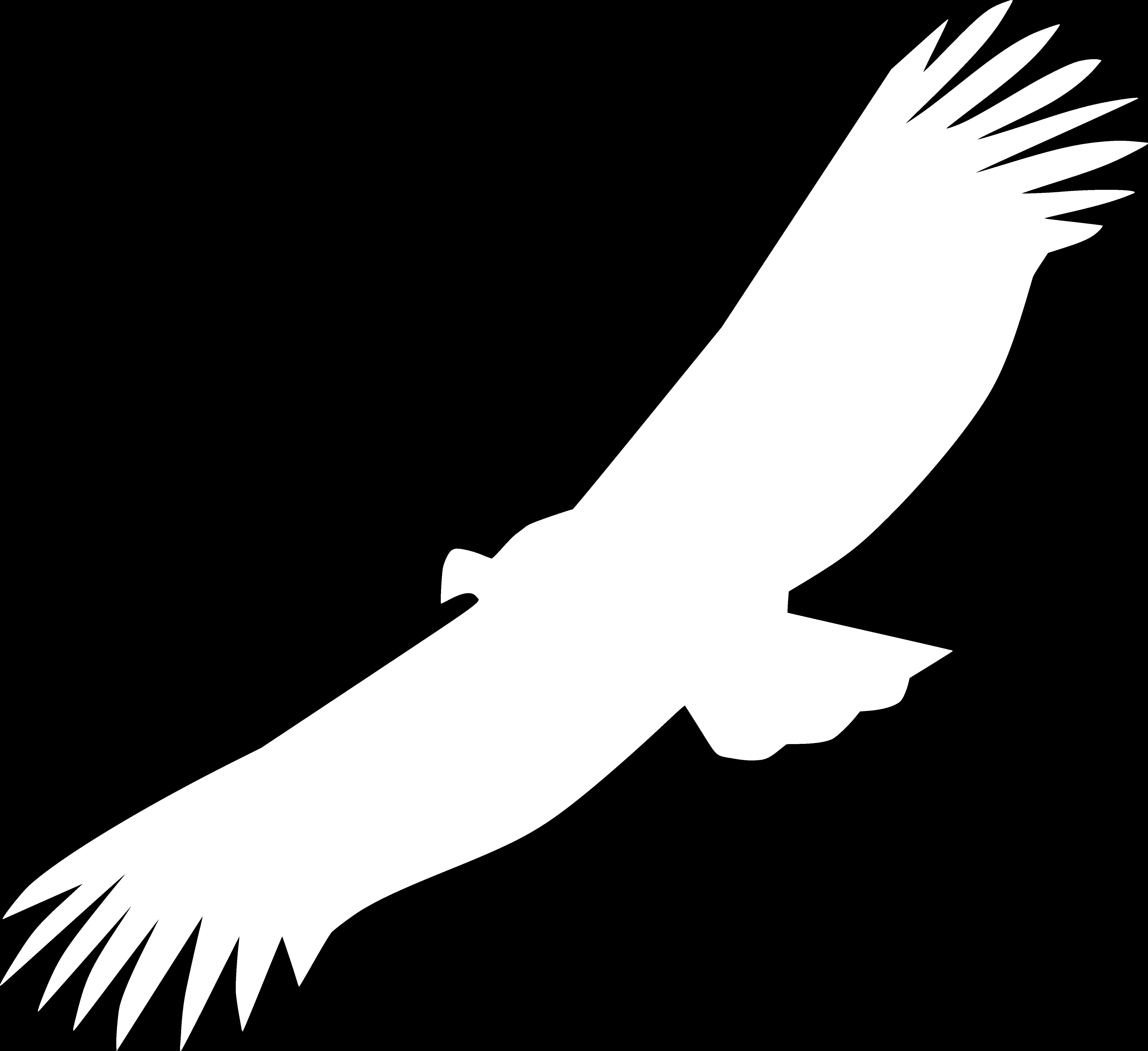 vautourblanc